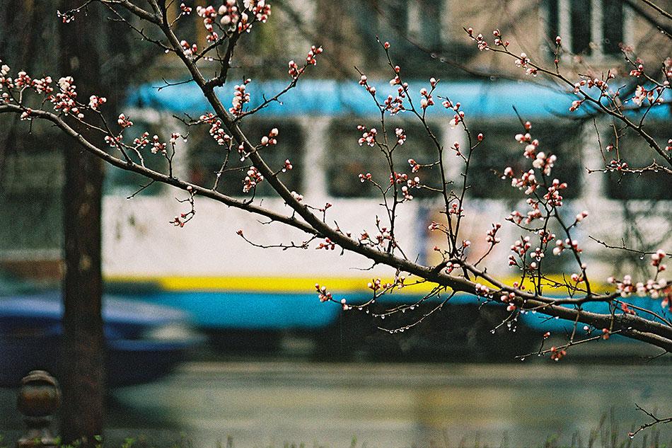 2004год. Весна наулице Конаева ичешский трамвай TatraT3 назаднем плане. Городские власти закупали бэушные вагоны вГермании начиная с1998 года