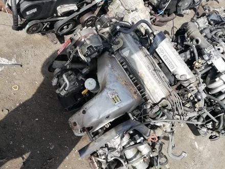 Двигатель и коропка акпп за 111 тг. в Алматы